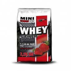 Гейнер Vision Nutrition WHEY GAINER 2.25 кг